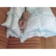 Одеяло 100х150 из гусиного пуха-пера